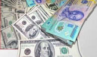dollar-tiendongzx-305