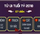 tu-vi-tuoi-ty-2018