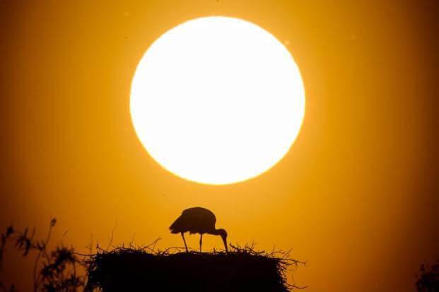 Mơ thấy mặt trời tỏa sáng điềm báo gì đánh số gì thì trúng?
